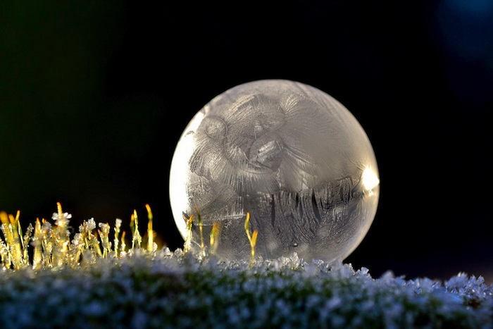 Futuristerna ute ur frysen